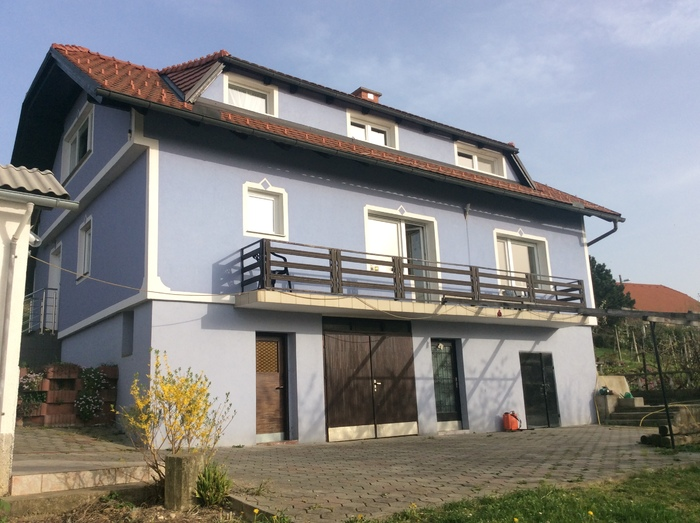 Renovated 3 storey house with land in Destrnik