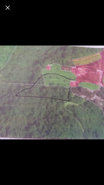 Land for Sale in Slovenia