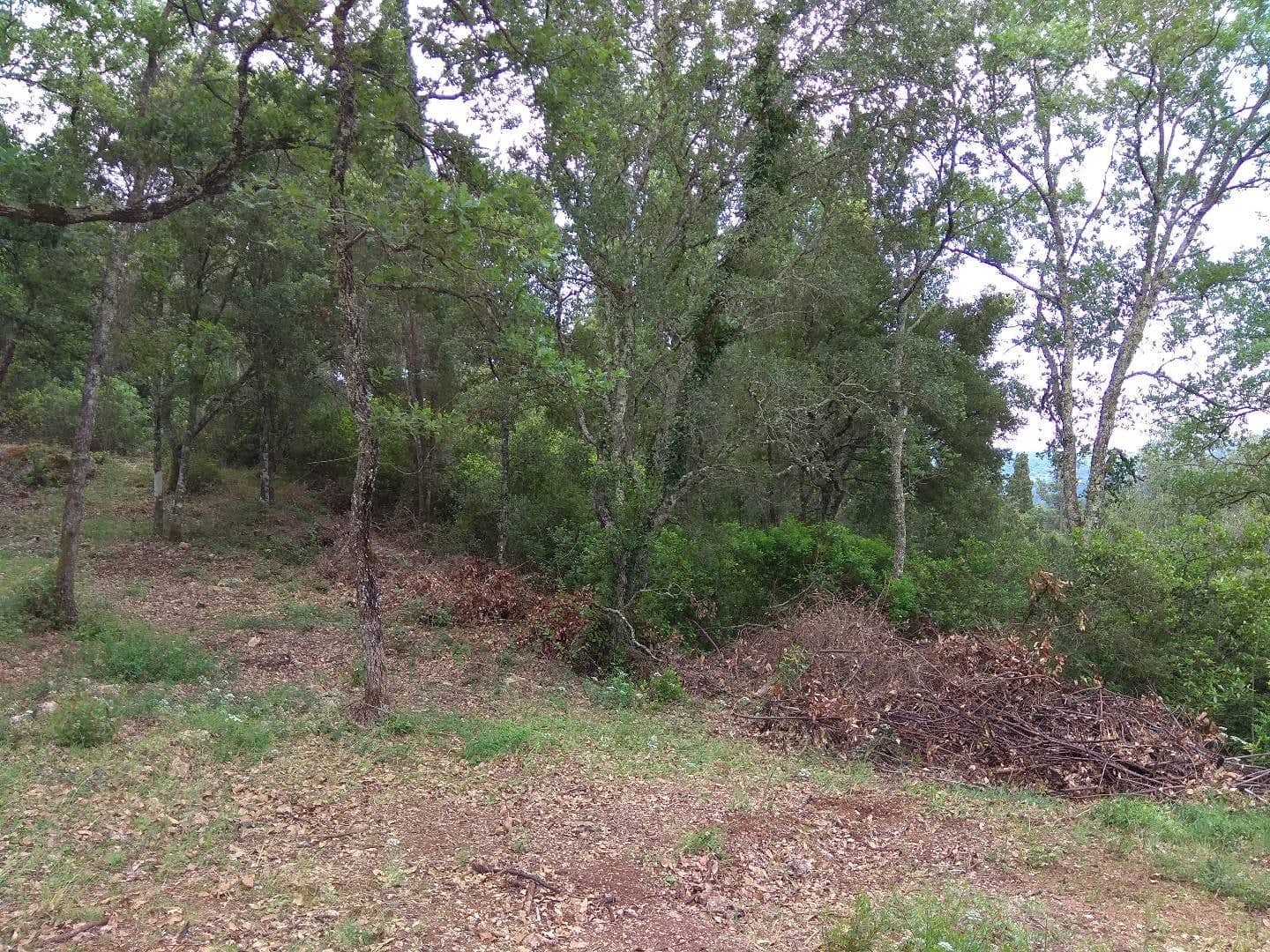 Three Plots of Land For Sale in Kato Korakiana Corfu