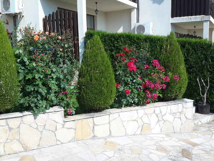 1547037099-sell-property-20170601_144440.jpg