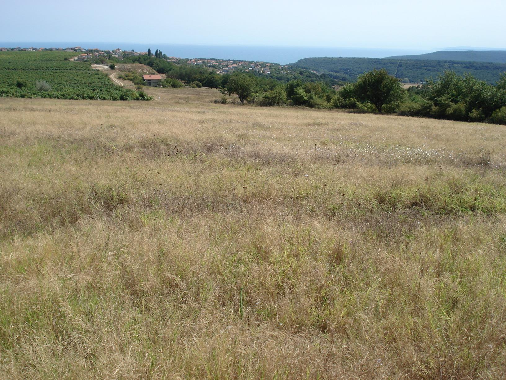2 Plots of Regulated Land