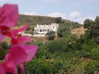 Quinta das Oliveiras