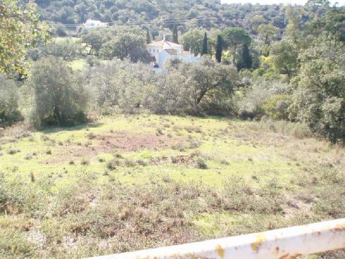 2 Large Plots of Land with Planning Permission