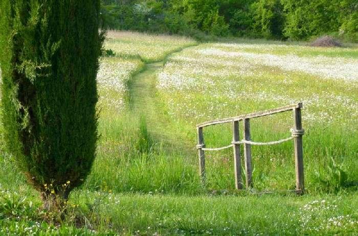 Property for Sale, France, Midi Pyrenees, Sainte Cecile du Cayrou, Combenegre 20138