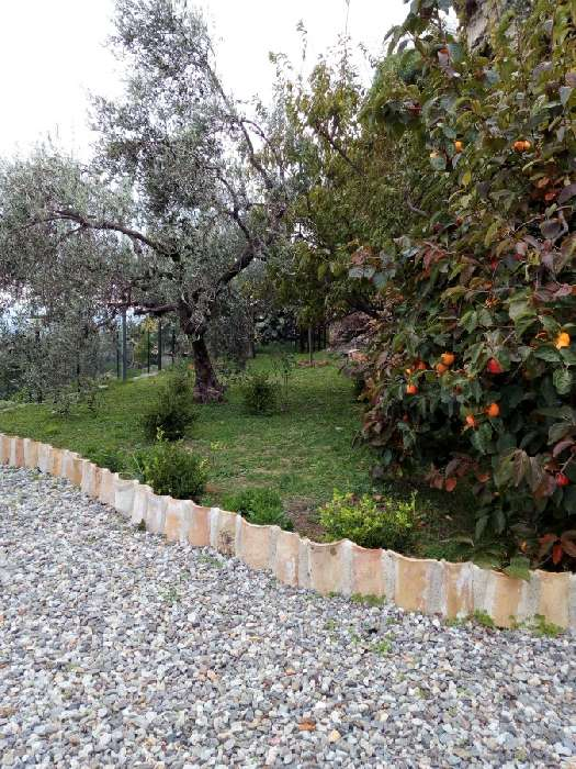 Property for Sale, Italy, Calabria, Gerace, Garden of Gerace 20482