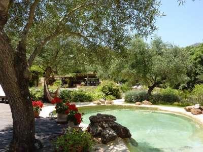 Land  For Sale in Cortes de la Frontera