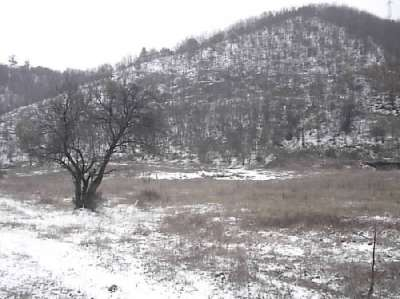 Plot of Land for Sale in Sofia Province